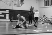 wrestling pic